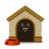 Kennel. With dog inside on a white background Royalty Free Stock Photos