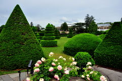 Kennett Square, PA: Longwood Gardens Topiary Trees Royalty Free Stock Images