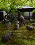 Kennin籍日本庭院在京都 免版税库存图片