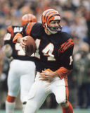 Kenny Anderson Cincinnati Bengals Royalty Free Stock Image