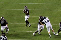 Kenny Hill. Drops back to pass in Texas A&M's victory over Rice at Kyle Field Royalty Free Stock Photos