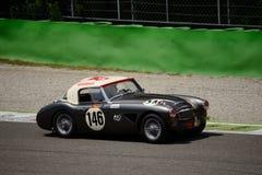 Kennzeichen 1962 Austin Healeys 3000 1 an Monza-Stromkreis stockfotografie