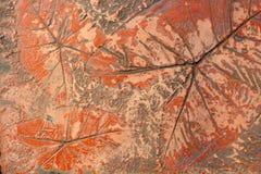Kennzeichen des Blattes auf der Betondecke Stockfotos
