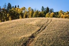 Kenosha passerande Colorado Arkivfoto