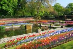 从事园艺凹下去kensington的宫殿 免版税库存图片