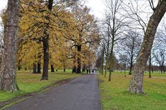 Kensington Gardens and Hyde Park, London, UK during autumn Stock Photo