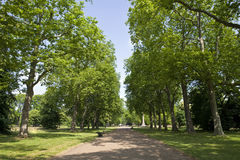Kensington Gardens in London Stock Images