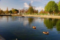 Kensington Gardens. London, England Royalty Free Stock Image
