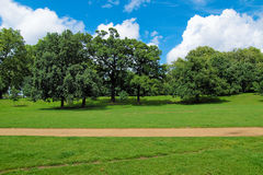 Kensington gardens London Royalty Free Stock Image