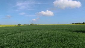 Kent Countryside rond Munster stock footage