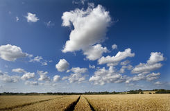 Kent countryside and village Stock Photos