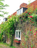 Kent roses cottage Stock Photo
