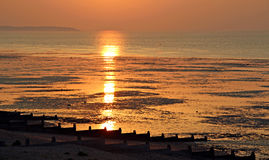 Kent sunset. Photo of spectacular golden sunset over the kent coast with breakwaters at low tide.showing the isle of sheppey in the distance Royalty Free Stock Photo