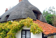 Kent thatched country cottage Stock Photography