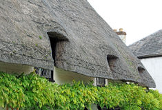 Kent thatched country cottage roof Stock Images
