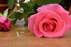 Kentern Sie Blumenvase mit Rosen Vase auf Keramikfliesen Wasser geleckt aus einem Vase heraus Stockbilder