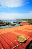Kenting coast during a sunny day, Taiwan. Kenting coast during a sunny day Stock Images