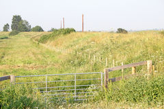 Kentische Wiesenfelder Stockbild