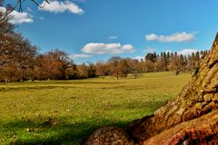 Kentish krajobraz Obraz Stock