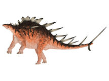 Kentrosaurus Royalty Free Stock Photography