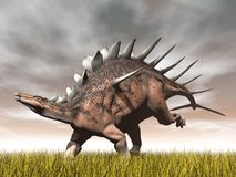 Kentrosaurus dinosaur - 3D render Royalty Free Stock Photography