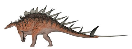 Kentrosaurus dinosaur Royalty Free Stock Photo