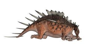Kentrosaurus dinosaur resting - 3D render Stock Photography