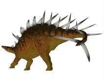 Kentrosaurus Dinosaur Tail Stock Images