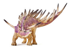 Kentrosaurus dinosaur toy isolated with clipping path. Royalty Free Stock Image
