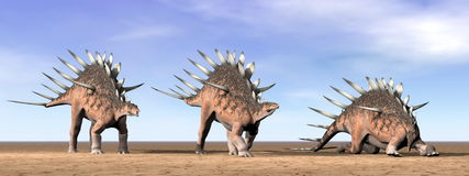 Kentrosaurus dinosaurs in the desert - 3D render Stock Image