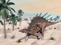 Kentrosaurus dinosaurs in the desert - 3D render Royalty Free Stock Photos