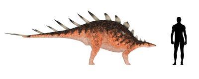 Kentrosaurus Size Comparison royalty free illustration