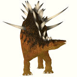 Kentrosaurus on White Stock Images