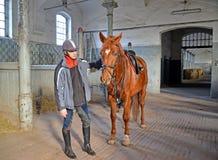 KENTShIN,波兰 有trakenensky品种马的骑师在槽枥花费 免版税库存图片