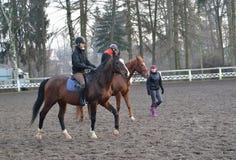KENTShIN, POLOGNE Cavaliers à cheval sur des chevaux de race trakenensky Ouvrez l'arène du goujon Photo stock