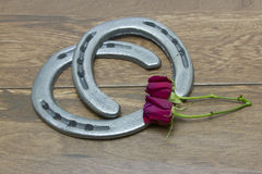 Kentucky Derby red roses with horseshoes. Silver horseshoes on barn wood background with red roses royalty free stock photo