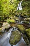 Kentucky Falls, Oregon Royalty Free Stock Photo
