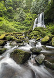 Kentucky Falls, Oregon stock photos