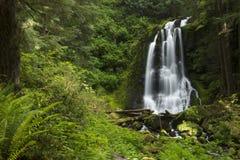 Kentucky Falls Waterfall Stock Image