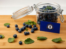 Kentucky flag on a wooden plank with blueberries  on whi Stock Photo
