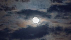 Kentucky Full Moon On A Stormy Night. A stormy night over Central Kentucky during a full moon royalty free stock images