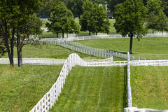 Kentucky Horse Farm Stock Photos