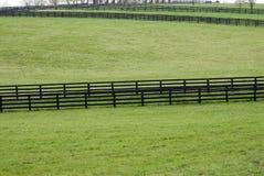 Kentucky Horse Farm Royalty Free Stock Photography