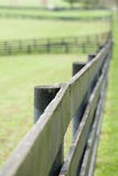 Kentucky Horse Farm Stock Image