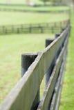 Kentucky Horse Farm Stock Image
