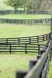 Kentucky Horse Farm Stock Photo
