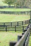 Kentucky Horse Farm Stock Photo