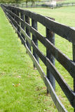 Kentucky Horse Farm Royalty Free Stock Photo