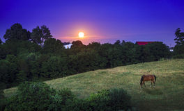 Kentucky moonrise Zdjęcia Royalty Free