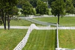 Kentucky-Pferden-Bauernhof Stockfotos